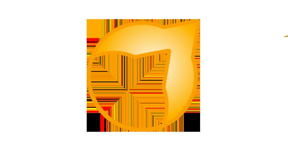 Logo_tshoko1